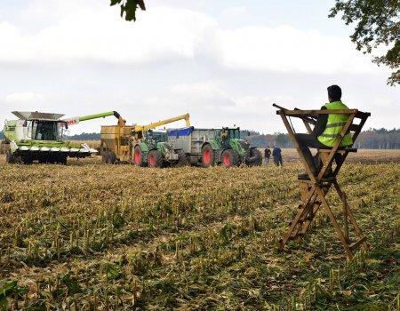 Jagen tijdens oogstwerkzaamheden is en blijft toegestaan