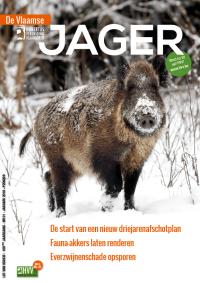 VJ_18_01_fe_cover_web