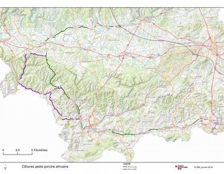Afrikaanse varkenspest: Frans leger ingeschakeld